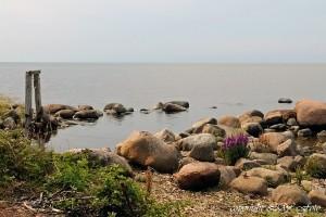 Stranden Lilla hamnen