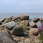 Stranden stenar